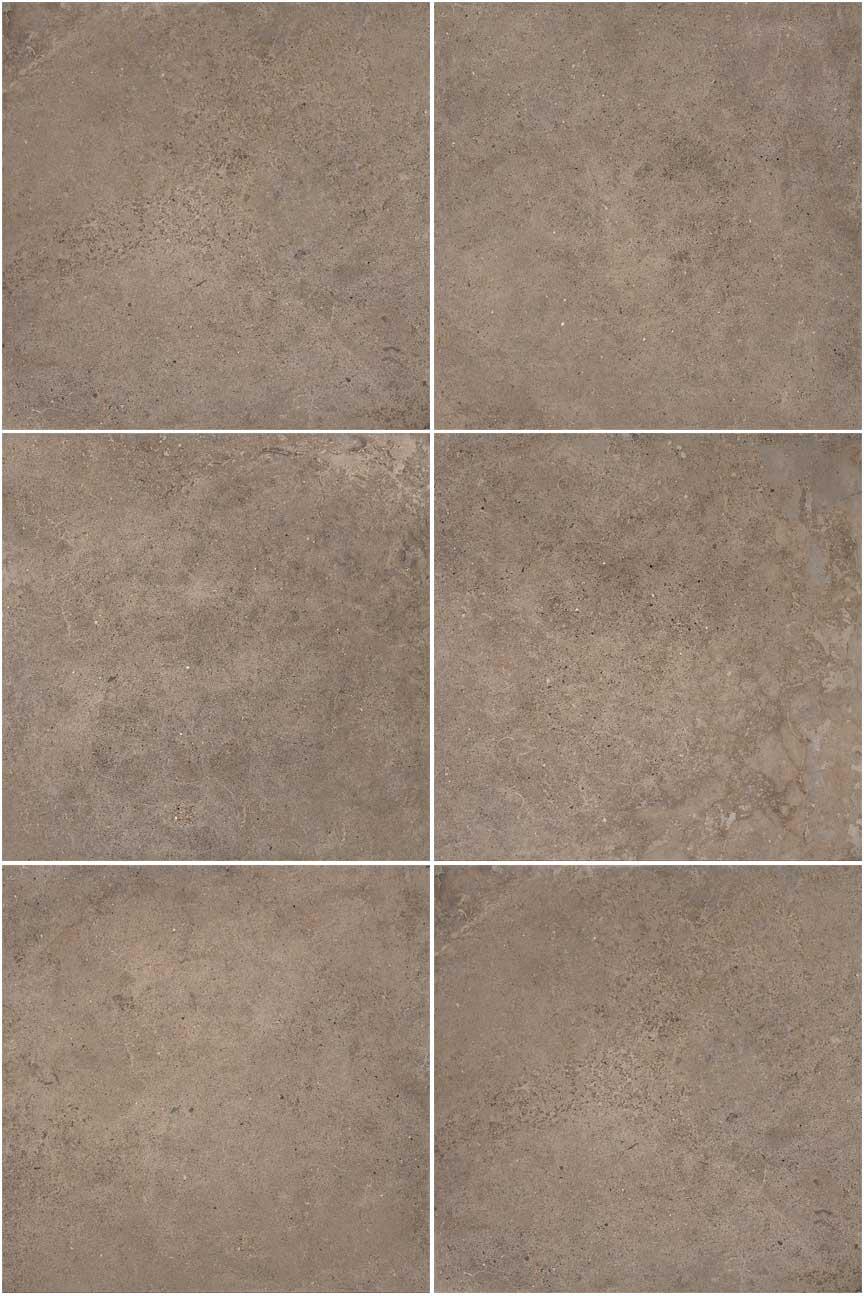 Puma Mocha Floor Amp Wall Tile Company